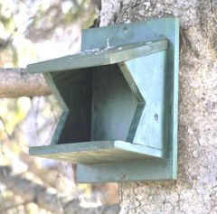 Nest box for robins