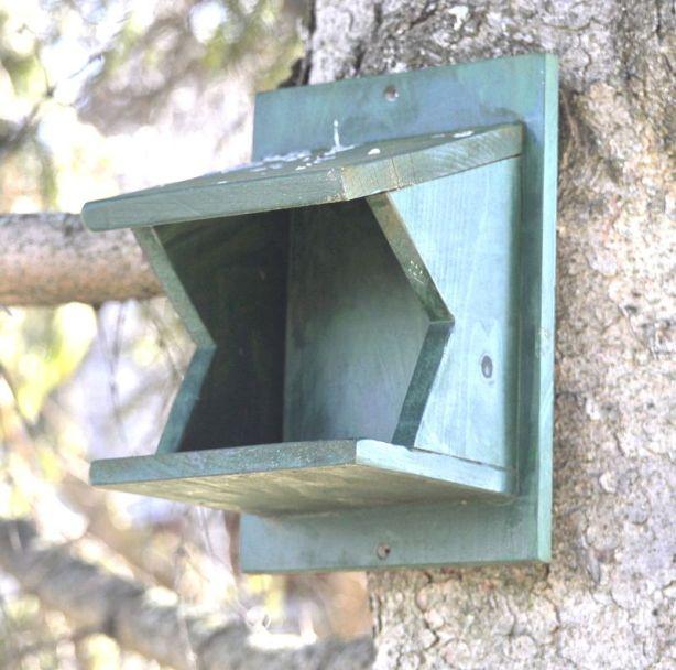 bird houses bluebirds 1