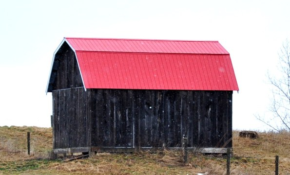 Wood shed with the red roof