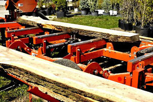 portable sawmill cutting hard maple slabs