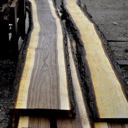 Lovely live edge walnut slabs